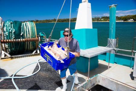 5knots Luxury Accommodation - Boating